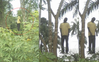 Sad PHOTOS: Man Hangs Himself After Testing Positive for HIV